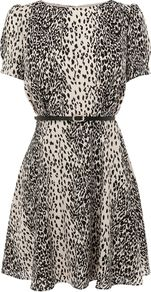 Women's Animal Skater Dress, Multi Coloured - length: mid thigh; neckline: round neck; waist detail: belted waist/tie at waist/drawstring; predominant colour: ivory; secondary colour: black; occasions: evening; fit: fitted at waist & bust; style: fit & flare; fibres: cotton - 100%; hip detail: soft pleats at hip/draping at hip/flared at hip; sleeve length: short sleeve; sleeve style: standard; texture group: sheer fabrics/chiffon/organza etc.; pattern type: fabric; pattern size: small & busy; pattern: animal print
