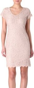 Wanda Lace Dress - style: shift; neckline: round neck; pattern: plain; predominant colour: blush; occasions: evening, occasion, holiday; length: just above the knee; fit: body skimming; sleeve length: short sleeve; sleeve style: standard; texture group: lace; pattern type: fabric; pattern size: standard; fibres: viscose/rayon - mix
