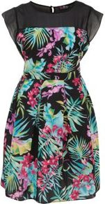 Tropical Print Dress - sleeve style: capped; waist detail: fitted waist; back detail: tie detail at back; shoulder detail: contrast pattern/fabric at shoulder; occasions: evening, occasion, holiday; length: just above the knee; fit: fitted at waist & bust; style: fit & flare; fibres: polyester/polyamide - 100%; neckline: crew; hip detail: soft pleats at hip/draping at hip/flared at hip; bust detail: contrast pattern/fabric/detail at bust; predominant colour: multicoloured; sleeve length: short sleeve; trends: high impact florals; pattern type: fabric; pattern size: standard; pattern: patterned/print; texture group: other - light to midweight