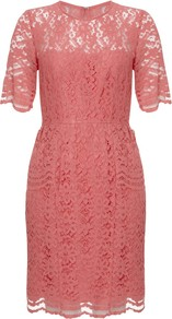 Gloria Lace Dress - style: shift; length: mid thigh; fit: fitted at waist; pattern: plain; waist detail: fitted waist; shoulder detail: contrast pattern/fabric at shoulder; predominant colour: pink; occasions: evening, work, occasion; fibres: nylon - mix; neckline: crew; back detail: keyhole/peephole detail at back; sleeve length: short sleeve; sleeve style: standard; texture group: lace; trends: glamorous day shifts; pattern type: fabric; pattern size: standard; embellishment: embroidered