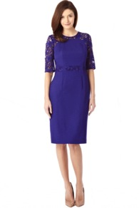 Elsa Lace Dress - style: shift; neckline: round neck; fit: tailored/fitted; pattern: plain; waist detail: embellishment at waist/feature waistband; hip detail: fitted at hip; shoulder detail: contrast pattern/fabric at shoulder; predominant colour: purple; occasions: evening, occasion; length: on the knee; sleeve length: 3/4 length; sleeve style: standard; texture group: crepes; pattern type: fabric; pattern size: standard; fibres: viscose/rayon - mix