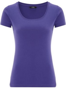Scooped Neck T Shirt Plum - pattern: plain; waist detail: fitted waist; style: t-shirt; predominant colour: purple; occasions: casual, work; length: standard; neckline: scoop; fibres: cotton - 100%; fit: body skimming; sleeve length: short sleeve; sleeve style: standard; pattern type: fabric; pattern size: standard; texture group: jersey - stretchy/drapey