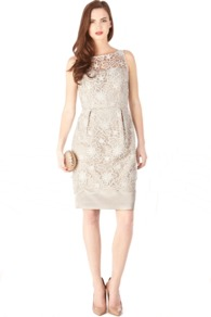 Kaitlin Dress - style: shift; neckline: round neck; fit: tailored/fitted; sleeve style: sleeveless; waist detail: fitted waist; shoulder detail: contrast pattern/fabric at shoulder; back detail: contrast pattern/fabric at back; predominant colour: stone; occasions: evening, occasion; length: just above the knee; fibres: polyester/polyamide - 100%; hip detail: sculpting darts/pleats/seams at hip; bust detail: contrast pattern/fabric/detail at bust; sleeve length: sleeveless; texture group: lace; pattern type: fabric; pattern size: standard; pattern: patterned/print; embellishment: embroidered