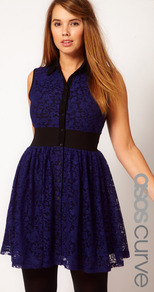 Curve Mini Lace Dress With Elastic Waist - style: shirt; neckline: shirt collar/peter pan/zip with opening; fit: fitted at waist; pattern: plain; sleeve style: sleeveless; waist detail: elasticated waist; back detail: contrast pattern/fabric at back; predominant colour: navy; occasions: casual, evening, occasion; length: just above the knee; fibres: polyester/polyamide - stretch; sleeve length: sleeveless; texture group: lace; trends: volume; pattern type: fabric