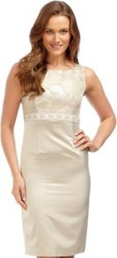 Gold Jacquard Shift Dress - style: shift; neckline: round neck; fit: tailored/fitted; sleeve style: sleeveless; bust detail: added detail/embellishment at bust, contrast pattern/fabric/detail at bust; waist detail: fitted waist, belted waist/tie at waist/drawstring; predominant colour: champagne; occasions: evening, occasion; length: on the knee; fibres: polyester/polyamide - mix; sleeve length: sleeveless; pattern type: fabric; pattern size: standard; texture group: brocade/jacquard; embellishment: embroidered