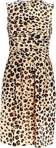 Leopard Rose Detail Dress - style: shift; neckline: round neck; fit: fitted at waist; sleeve style: sleeveless; waist detail: twist front waist detail/nipped in at waist on one side/soft pleats/draping/ruching/gathering waist detail; occasions: casual, evening, occasion; length: just above the knee; fibres: polyester/polyamide - 100%; back detail: keyhole/peephole detail at back; predominant colour: multicoloured; sleeve length: sleeveless; texture group: cotton feel fabrics; pattern type: fabric; pattern size: big & busy; pattern: animal print