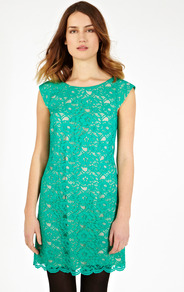 Izzy Lace Shift Dress - style: shift; length: mid thigh; neckline: round neck; sleeve style: capped; pattern: plain; predominant colour: mint green; secondary colour: nude; occasions: evening, occasion; fit: soft a-line; sleeve length: short sleeve; texture group: lace; trends: glamorous day shifts; pattern type: fabric; fibres: viscose/rayon - mix