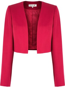 Women's Dreis Bolero, Pink - pattern: plain; style: bolero/shrug; collar: shawl/waterfall; length: cropped; predominant colour: hot pink; occasions: casual, evening, work, occasion; fit: tailored/fitted; fibres: polyester/polyamide - 100%; sleeve length: long sleeve; sleeve style: standard; collar break: low/open; pattern type: fabric; pattern size: standard; texture group: other - light to midweight