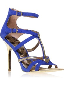 Alena - predominant colour: royal blue; occasions: evening, occasion; material: suede; heel height: high; embellishment: buckles; ankle detail: ankle strap; heel: stiletto; toe: open toe/peeptoe; style: strappy; trends: metallics; finish: plain; pattern: two-tone