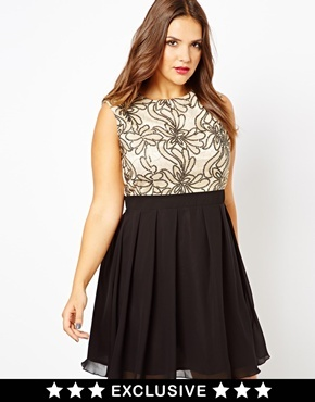 Embellished Bodice Skater Dress - sleeve style: sleeveless; predominant colour: ivory/cream; occasions: evening, occasion; length: just above the knee; fit: fitted at waist & bust; style: fit & flare; fibres: polyester/polyamide - 100%; neckline: crew; hip detail: adds bulk at the hips; bust detail: contrast pattern/fabric/detail at bust; sleeve length: sleeveless; texture group: sheer fabrics/chiffon/organza etc.; pattern type: fabric; pattern size: standard; pattern: colourblock; trends: excess embellishment; season: a/w 2013
