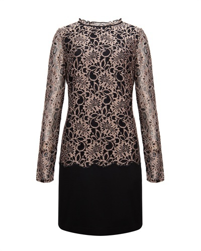 Ted Baker Elke Lace Detail Dress - style: shift; length: mid thigh; fit: tailored/fitted; neckline: high neck; secondary colour: taupe; predominant colour: black; occasions: evening, occasion; sleeve length: long sleeve; sleeve style: standard; texture group: lace; pattern type: fabric; pattern size: standard; pattern: patterned/print; fibres: viscose/rayon - mix; trends: gothic romance; season: a/w 2013