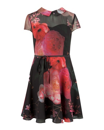 Ted Baker Eudorra Natural Kingdom Print Dress - length: mid thigh; sleeve style: capped; predominant colour: true red; secondary colour: black; occasions: evening, occasion; fit: fitted at waist & bust; style: fit & flare; fibres: polyester/polyamide - mix; neckline: no opening/shirt collar/peter pan; sleeve length: short sleeve; texture group: sheer fabrics/chiffon/organza etc.; pattern type: fabric; pattern size: standard; pattern: florals; trends: 1940's hitchcock heroines; season: a/w 2013