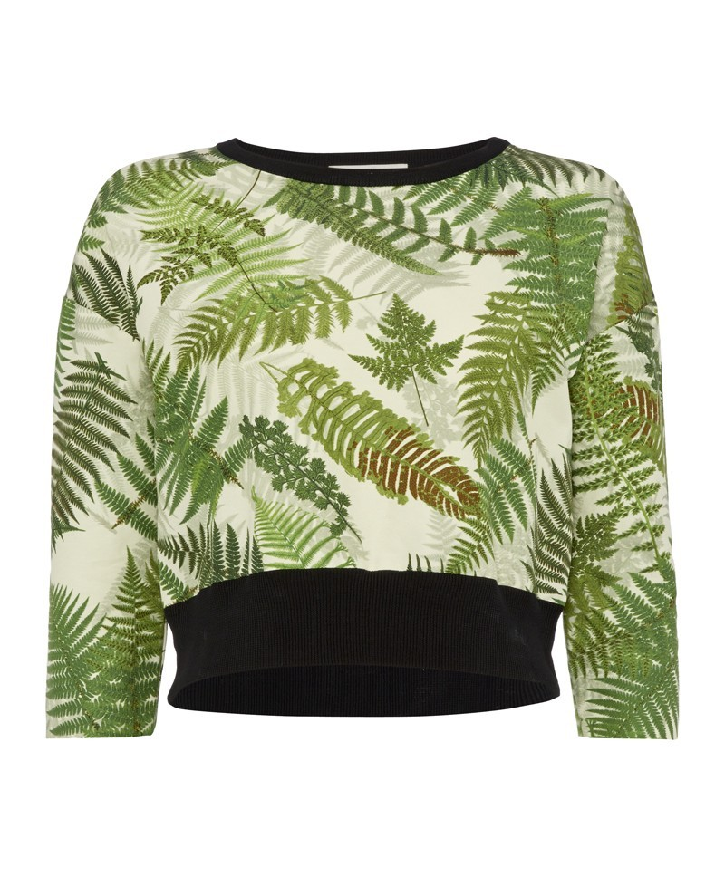 Amazonas Fern Print Crew Neck With Knitted Back - neckline: round neck; length: cropped; style: sweat top; predominant colour: lime; secondary colour: black; occasions: casual, evening, creative work; fibres: cotton - mix; fit: body skimming; sleeve length: 3/4 length; sleeve style: standard; pattern type: fabric; pattern size: standard; pattern: patterned/print; texture group: jersey - stretchy/drapey; trends: world traveller; season: a/w 2013