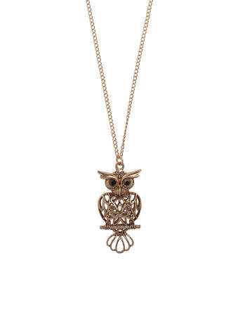 Gold Filigree Owl Long Necklace - predominant colour: gold; occasions: casual, evening, creative work; style: pendant; length: long; size: standard; material: chain/metal; finish: metallic; season: s/s 2014