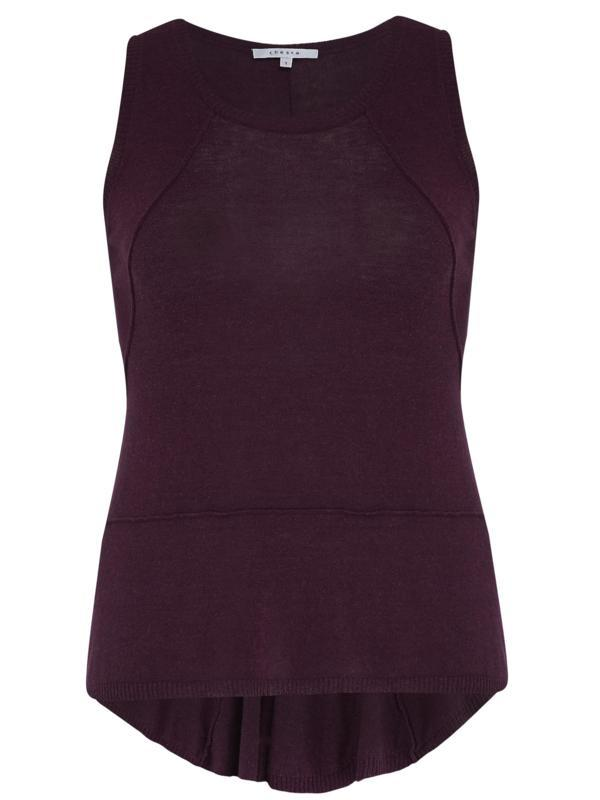 Plum Seamed Knitted Top With Godet - neckline: round neck; pattern: plain; sleeve style: sleeveless; predominant colour: aubergine; occasions: casual; length: standard; style: top; fit: body skimming; sleeve length: sleeveless; texture group: knits/crochet; pattern type: knitted - fine stitch; season: a/w 2014