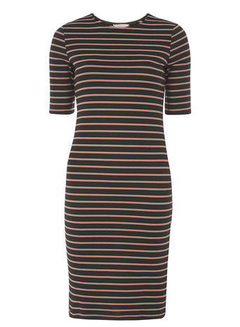 Womens Petite Bodycon Stripe Dress Black - fit: tight; pattern: horizontal stripes; style: bodycon; predominant colour: camel; secondary colour: black; occasions: evening; length: just above the knee; fibres: polyester/polyamide - stretch; neckline: crew; sleeve length: short sleeve; sleeve style: standard; texture group: jersey - clingy; pattern type: fabric; multicoloured: multicoloured; season: a/w 2015