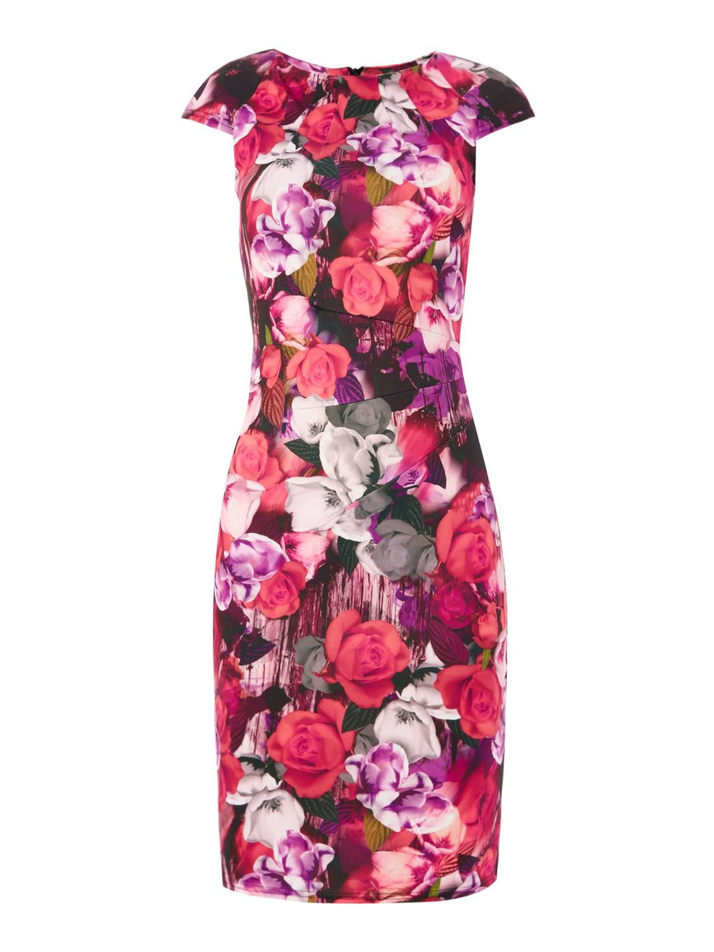 Cap Sleeve Round Neck Floral Bodycon Dress, Multi Coloured - style: shift; sleeve style: capped; fit: tailored/fitted; secondary colour: white; predominant colour: hot pink; length: on the knee; fibres: polyester/polyamide - stretch; occasions: occasion; neckline: crew; sleeve length: short sleeve; pattern type: fabric; pattern: florals; texture group: other - light to midweight; season: s/s 2016