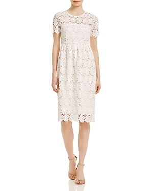 Tagan Dress - style: shift; pattern: plain; bust detail: sheer at bust; predominant colour: ivory/cream; occasions: evening; length: on the knee; fit: body skimming; fibres: polyester/polyamide - 100%; neckline: crew; sleeve length: short sleeve; sleeve style: standard; texture group: lace; pattern type: fabric; pattern size: standard; season: s/s 2016; wardrobe: event