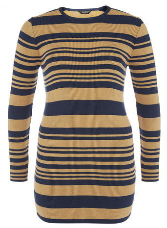 Womens Dp Curve Camel And Navy Striped Ribbed Tunic, Camel - pattern: horizontal stripes; length: below the bottom; style: t-shirt; secondary colour: navy; predominant colour: camel; occasions: casual; fibres: polyester/polyamide - stretch; fit: body skimming; neckline: crew; sleeve length: long sleeve; sleeve style: standard; texture group: jersey - clingy; pattern type: knitted - fine stitch; pattern size: standard; season: s/s 2016; wardrobe: basic