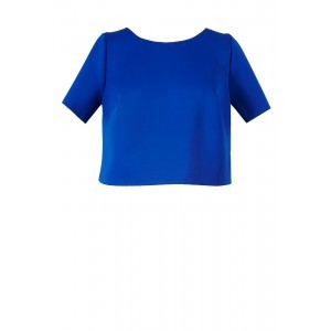 Neoprene Plain T Shirt - neckline: round neck; pattern: plain; length: cropped; style: t-shirt; predominant colour: royal blue; occasions: casual, creative work; fibres: polyester/polyamide - stretch; fit: straight cut; sleeve length: short sleeve; sleeve style: standard; pattern type: fabric; texture group: other - light to midweight; season: s/s 2016; wardrobe: highlight