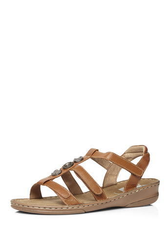 Womens Evans Tan Leather Stud Gladiator Sandal S, Tan/Rust - predominant colour: tan; occasions: casual, holiday; material: leather; heel height: flat; ankle detail: ankle strap; heel: wedge; toe: open toe/peeptoe; style: strappy; finish: plain; pattern: plain; season: s/s 2016; wardrobe: highlight