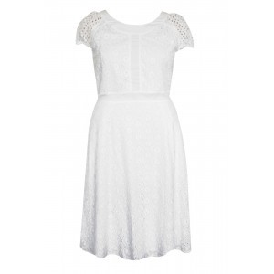 Broderie Anglaise Dress - pattern: plain; predominant colour: white; occasions: casual; length: just above the knee; fit: fitted at waist & bust; style: fit & flare; fibres: cotton - 100%; neckline: crew; sleeve length: short sleeve; sleeve style: standard; pattern type: fabric; texture group: broiderie anglais; season: s/s 2016; wardrobe: highlight