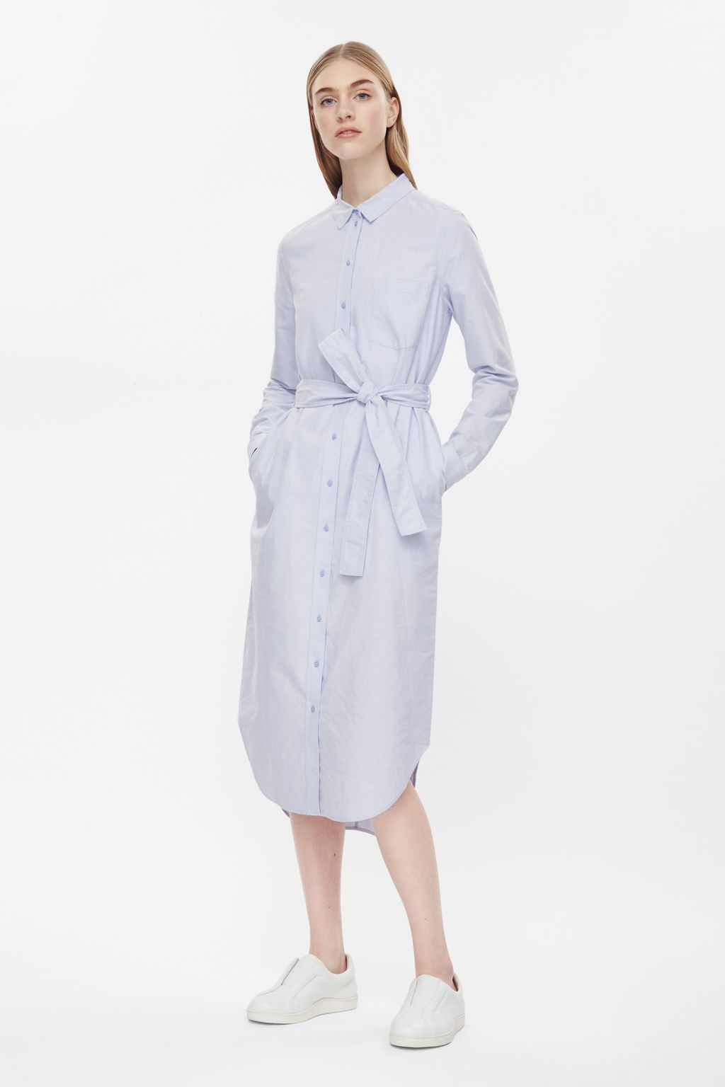 Long Belted Shirt Dress - style: shirt; length: below the knee; neckline: shirt collar/peter pan/zip with opening; fit: fitted at waist; pattern: pinstripe; waist detail: belted waist/tie at waist/drawstring; secondary colour: white; predominant colour: navy; occasions: casual, creative work; fibres: cotton - 100%; sleeve length: long sleeve; sleeve style: standard; texture group: cotton feel fabrics; pattern type: fabric; pattern size: light/subtle; season: s/s 2016; wardrobe: highlight