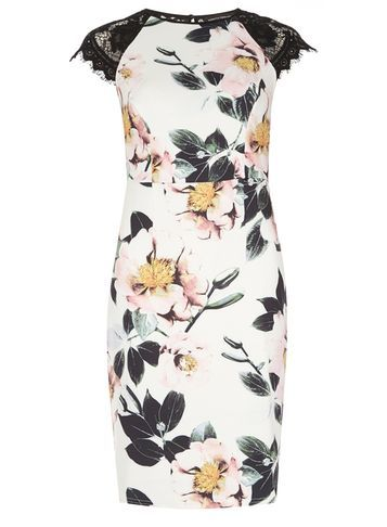 Womens Floral Printed Pencil Dress Multi Coloured - style: shift; sleeve style: capped; fit: tailored/fitted; predominant colour: ivory/cream; secondary colour: black; length: on the knee; fibres: polyester/polyamide - stretch; occasions: occasion; neckline: crew; sleeve length: short sleeve; pattern type: fabric; pattern size: standard; pattern: florals; texture group: other - light to midweight; multicoloured: multicoloured; season: s/s 2016; wardrobe: event