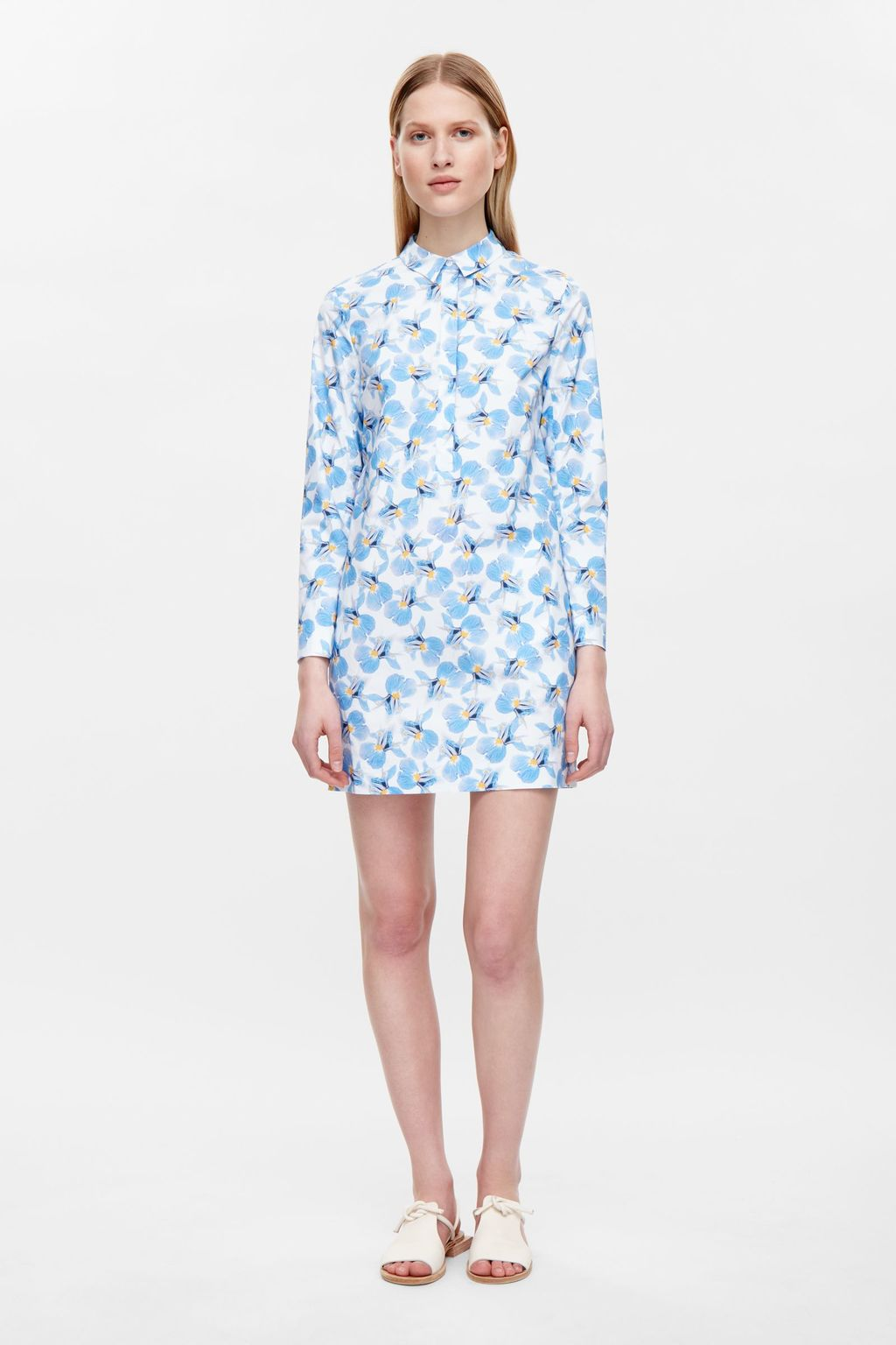 Floral Print Dress - style: shirt; length: mid thigh; neckline: shirt collar/peter pan/zip with opening; predominant colour: white; secondary colour: diva blue; occasions: casual; fit: body skimming; fibres: cotton - stretch; sleeve length: long sleeve; sleeve style: standard; texture group: cotton feel fabrics; pattern type: fabric; pattern: patterned/print; season: s/s 2016; wardrobe: highlight