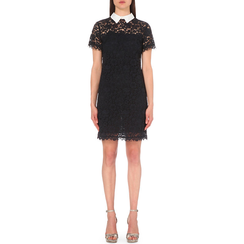 Collared Lace Dress, Women's, New Navy - style: shift; length: mid thigh; fit: tailored/fitted; secondary colour: white; predominant colour: navy; occasions: evening; fibres: silk - mix; neckline: no opening/shirt collar/peter pan; sleeve length: short sleeve; sleeve style: standard; texture group: lace; pattern type: fabric; pattern size: standard; pattern: patterned/print; shoulder detail: sheer at shoulder; season: s/s 2016; wardrobe: event