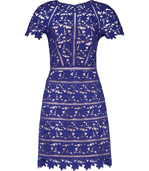 Orchid Lace Dress - style: shift; fit: tailored/fitted; predominant colour: royal blue; occasions: evening; length: just above the knee; fibres: polyester/polyamide - 100%; neckline: crew; sleeve length: short sleeve; sleeve style: standard; texture group: lace; pattern type: fabric; pattern: patterned/print; season: s/s 2016; wardrobe: event