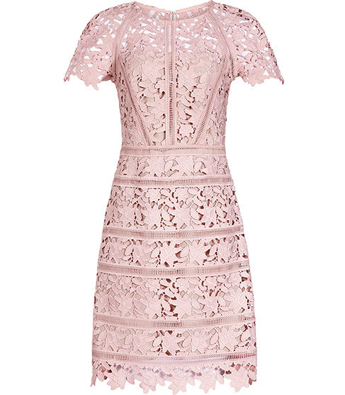 Orchid Lace Dress - style: shift; fit: tailored/fitted; predominant colour: blush; length: on the knee; fibres: polyester/polyamide - mix; occasions: occasion; neckline: crew; sleeve length: short sleeve; sleeve style: standard; texture group: lace; pattern type: fabric; pattern: patterned/print; season: s/s 2016; wardrobe: event