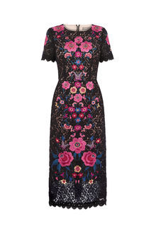 Embroidered Lace Dress - style: shift; fit: tailored/fitted; secondary colour: hot pink; predominant colour: black; occasions: evening; length: on the knee; fibres: viscose/rayon - 100%; neckline: crew; sleeve length: short sleeve; sleeve style: standard; texture group: lace; pattern type: fabric; pattern: patterned/print; multicoloured: multicoloured; season: s/s 2016; wardrobe: event