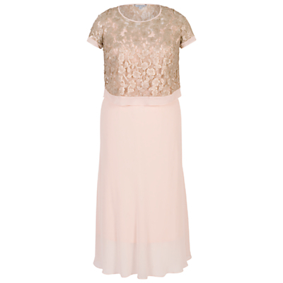 Trellis Applique Lace And Chiffon Dress - pattern: plain; predominant colour: blush; secondary colour: champagne; length: on the knee; fit: fitted at waist & bust; style: fit & flare; fibres: polyester/polyamide - 100%; occasions: occasion; neckline: crew; sleeve length: short sleeve; sleeve style: standard; texture group: sheer fabrics/chiffon/organza etc.; pattern type: fabric; embellishment: lace; season: s/s 2016; wardrobe: event; embellishment location: top