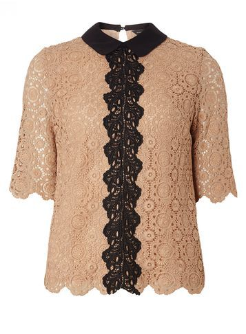 Womens Mocha Lace Tee Brown - neckline: round neck; sleeve style: capped; pattern: plain; length: below the bottom; predominant colour: camel; secondary colour: black; occasions: evening, creative work; style: top; fibres: polyester/polyamide - 100%; fit: body skimming; sleeve length: half sleeve; pattern type: fabric; texture group: other - light to midweight; embellishment: lace; season: s/s 2016; wardrobe: highlight