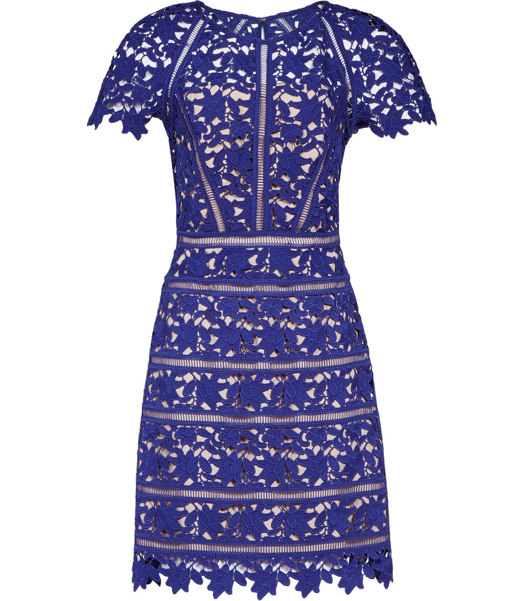Orchid Womens Lace Dress In Blue - style: shift; fit: tailored/fitted; pattern: plain; predominant colour: royal blue; occasions: evening; length: just above the knee; fibres: viscose/rayon - stretch; neckline: crew; sleeve length: short sleeve; sleeve style: standard; texture group: lace; pattern type: fabric; season: s/s 2016; wardrobe: event