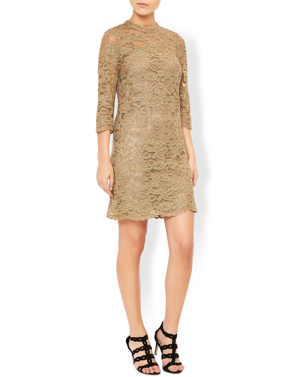 Caspia Lace Dress - fit: tight; neckline: high neck; style: bodycon; predominant colour: gold; occasions: evening; length: just above the knee; fibres: acrylic - mix; sleeve length: 3/4 length; sleeve style: standard; texture group: lace; pattern type: fabric; pattern size: standard; pattern: patterned/print; embellishment: lace; season: s/s 2016; wardrobe: event