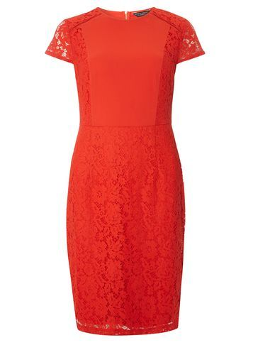 Womens Lace Chiffon Pencil Dress Orange - style: shift; sleeve style: capped; fit: tailored/fitted; pattern: plain; predominant colour: bright orange; occasions: evening; length: just above the knee; fibres: viscose/rayon - stretch; neckline: crew; sleeve length: short sleeve; texture group: lace; pattern type: fabric; season: s/s 2016