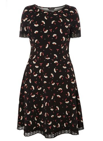 Womens **Dp Curve Black Floral Lace Trim Dress Black - secondary colour: ivory/cream; predominant colour: black; occasions: evening; length: on the knee; fit: fitted at waist & bust; style: fit & flare; fibres: cotton - stretch; neckline: crew; sleeve length: short sleeve; sleeve style: standard; pattern type: fabric; pattern: florals; texture group: jersey - stretchy/drapey; multicoloured: multicoloured; season: a/w 2016