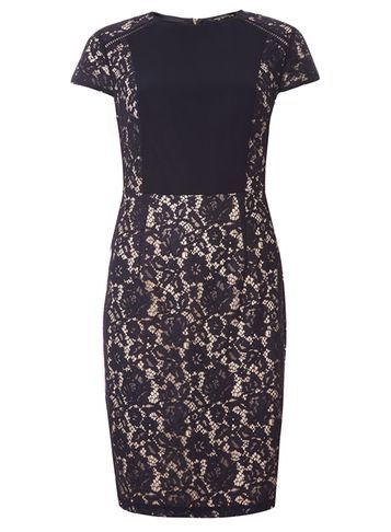 Womens Lace Chiffon Pencil Dress Navy - style: shift; sleeve style: capped; fit: tailored/fitted; hip detail: fitted at hip; secondary colour: ivory/cream; predominant colour: navy; occasions: evening, occasion; length: just above the knee; fibres: polyester/polyamide - 100%; neckline: crew; sleeve length: short sleeve; texture group: lace; pattern type: fabric; pattern size: standard; pattern: patterned/print; season: a/w 2016