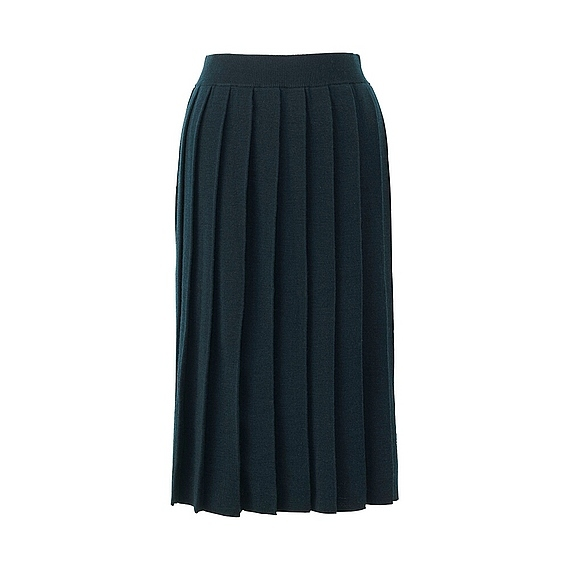 Women Merino Wool Blend Pleated Skirt Dark Green - pattern: plain; fit: body skimming; style: pleated; waist: mid/regular rise; predominant colour: navy; occasions: work; length: on the knee; fibres: wool - mix; texture group: knits/crochet; pattern type: fabric; wardrobe: basic; season: a/w 2016