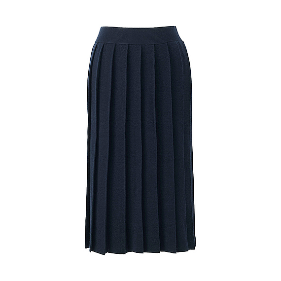 Women Merino Wool Blend Pleated Skirt Navy - pattern: plain; fit: body skimming; style: pleated; waist: mid/regular rise; predominant colour: navy; occasions: work; length: on the knee; fibres: wool - mix; pattern type: fabric; texture group: woven light midweight; wardrobe: basic; season: a/w 2016