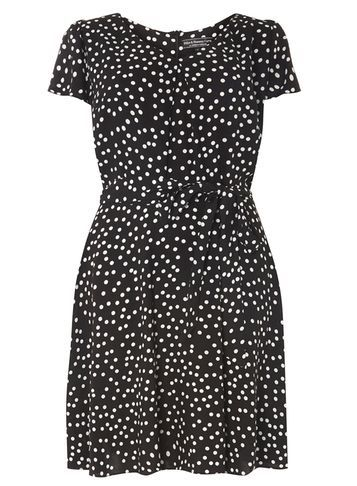 Womens **Billie & Blossom Curve Black Spotted Dress Black - style: shift; pattern: polka dot; waist detail: belted waist/tie at waist/drawstring; secondary colour: white; predominant colour: black; occasions: casual; length: just above the knee; fit: body skimming; fibres: viscose/rayon - 100%; neckline: crew; sleeve length: short sleeve; sleeve style: standard; pattern type: fabric; texture group: jersey - stretchy/drapey; multicoloured: multicoloured; season: a/w 2016; wardrobe: highlight