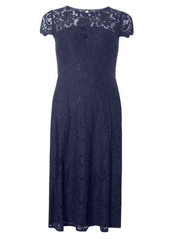 Womens Lace Scallop Back Midi Dress Navy - sleeve style: capped; predominant colour: navy; occasions: evening; length: on the knee; fit: fitted at waist & bust; style: fit & flare; fibres: polyester/polyamide - 100%; neckline: crew; sleeve length: short sleeve; texture group: lace; pattern type: fabric; pattern size: standard; pattern: patterned/print; season: a/w 2016