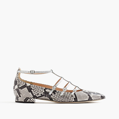 Caged Flats In Snakeskin Printed Leather - secondary colour: light grey; predominant colour: black; occasions: casual, creative work; material: leather; heel height: flat; ankle detail: ankle strap; toe: pointed toe; style: ballerinas / pumps; finish: plain; pattern: animal print; season: a/w 2016; wardrobe: highlight