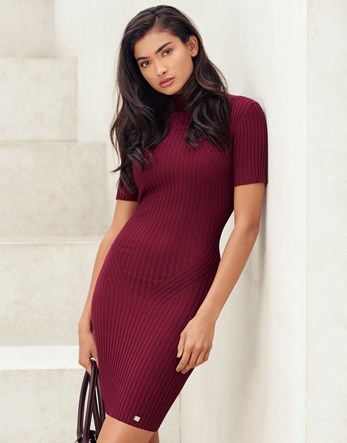 Rib Knit Dress - length: mid thigh; fit: tight; pattern: plain; neckline: high neck; style: bodycon; predominant colour: burgundy; occasions: evening; sleeve length: short sleeve; sleeve style: standard; texture group: jersey - clingy; pattern type: fabric; fibres: viscose/rayon - mix; season: a/w 2016; wardrobe: event