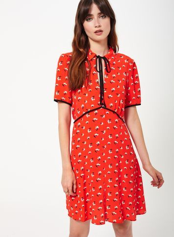 Womens Red Ditsy Tea Dress, Assorted - style: tea dress; neckline: pussy bow; secondary colour: ivory/cream; predominant colour: true red; occasions: casual; length: just above the knee; fit: body skimming; fibres: viscose/rayon - 100%; sleeve length: short sleeve; sleeve style: standard; pattern type: fabric; pattern: patterned/print; texture group: jersey - stretchy/drapey; multicoloured: multicoloured; season: a/w 2016; wardrobe: highlight