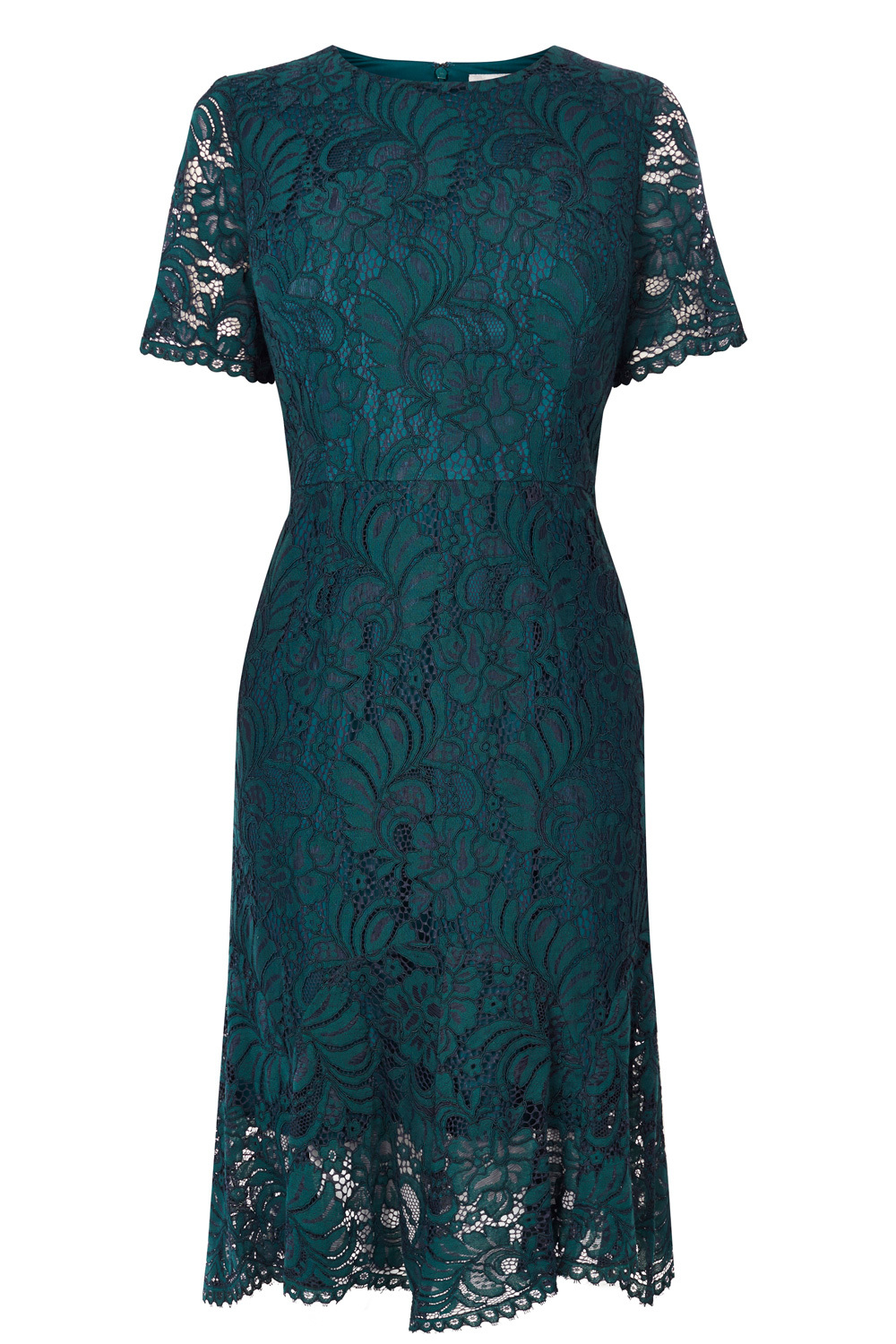 Linera Lace Dress - length: below the knee; pattern: plain; predominant colour: teal; occasions: evening; fit: fitted at waist & bust; style: fit & flare; fibres: nylon - mix; neckline: crew; sleeve length: short sleeve; sleeve style: standard; texture group: lace; pattern type: fabric; season: a/w 2016