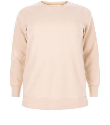 Curves Pink Brushed Sweater - pattern: plain; style: standard; predominant colour: blush; occasions: casual; length: standard; fibres: polyester/polyamide - mix; fit: standard fit; neckline: crew; sleeve length: long sleeve; sleeve style: standard; pattern type: fabric; texture group: jersey - stretchy/drapey; season: a/w 2016; wardrobe: highlight