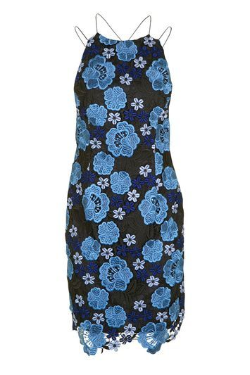 Blue Pansy Print Slip Dress - style: shift; length: mini; neckline: mandarin; sleeve style: spaghetti straps; fit: tailored/fitted; secondary colour: diva blue; predominant colour: black; occasions: evening, occasion; fibres: polyester/polyamide - 100%; sleeve length: sleeveless; texture group: lace; pattern type: fabric; pattern size: standard; pattern: patterned/print; trends: glossy girl; season: a/w 2016; wardrobe: event